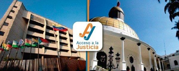 La Sala Constitucional asume poderes legislativos y prohíbe la doble militancia