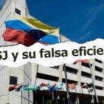 El TSJ y su falsa eficiencia