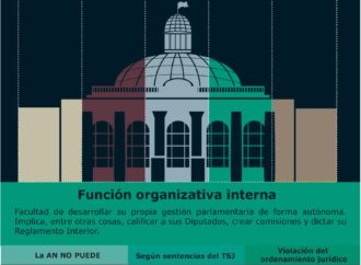TSJ vs. función organizativa interna de la AN