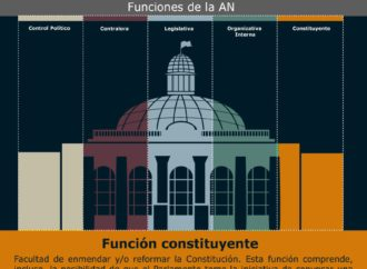 TSJ vs. función constituyente de la AN
