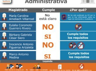 Perfil de la Sala Político Administrativa