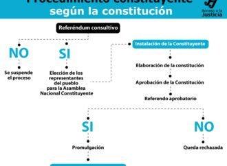 Procedimiento constituyente según la Constitución
