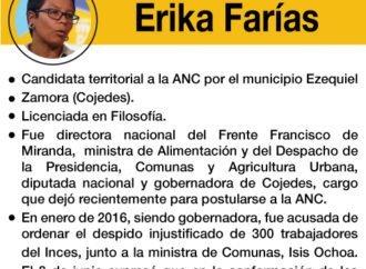 """Los """"peces gordos"""" de la Constituyente: Erika Farías"""