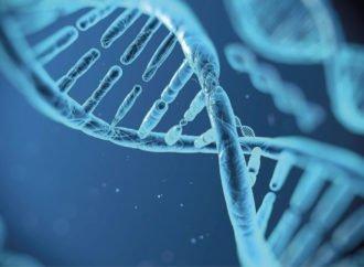 El control y contradicción de la prueba de experticia de ADN