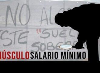 """El minúsculo salario mínimo desmonta farsa del gobierno """"obrero"""""""